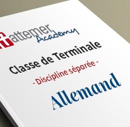 Terminale GÉNÉRALE - Allemand   inclus 3 séances de visio / trimestre