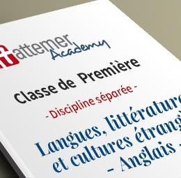 1e - Spécialité Langues, littératures et cultures en langue étrangère (Anglais)